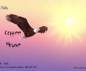bald-eagle-521492_1920-FB